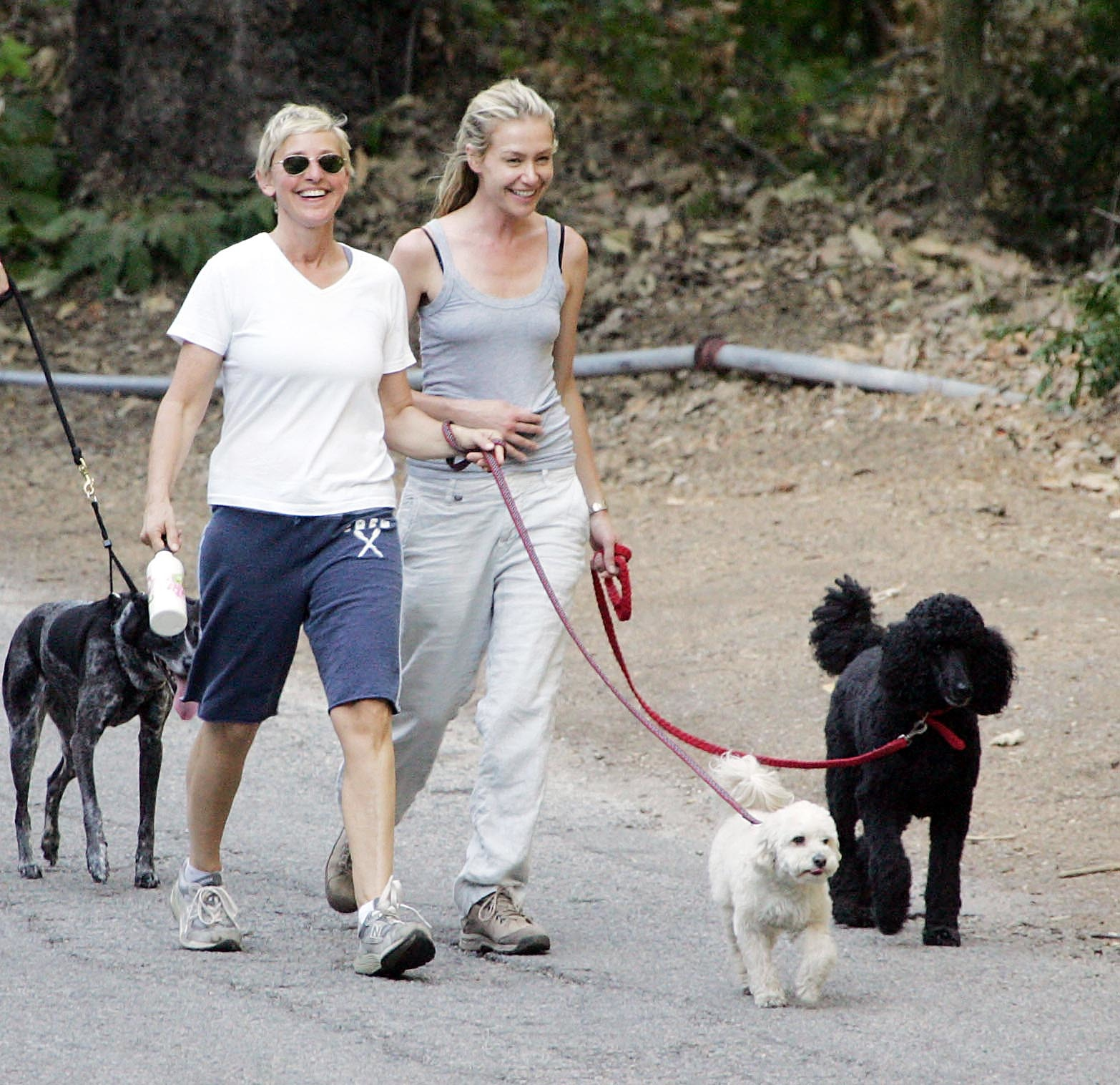 EXC ELLEN DEGENERES WALKING HER DOGS WITH HER WIFE, PORTIA DE ROSSI.