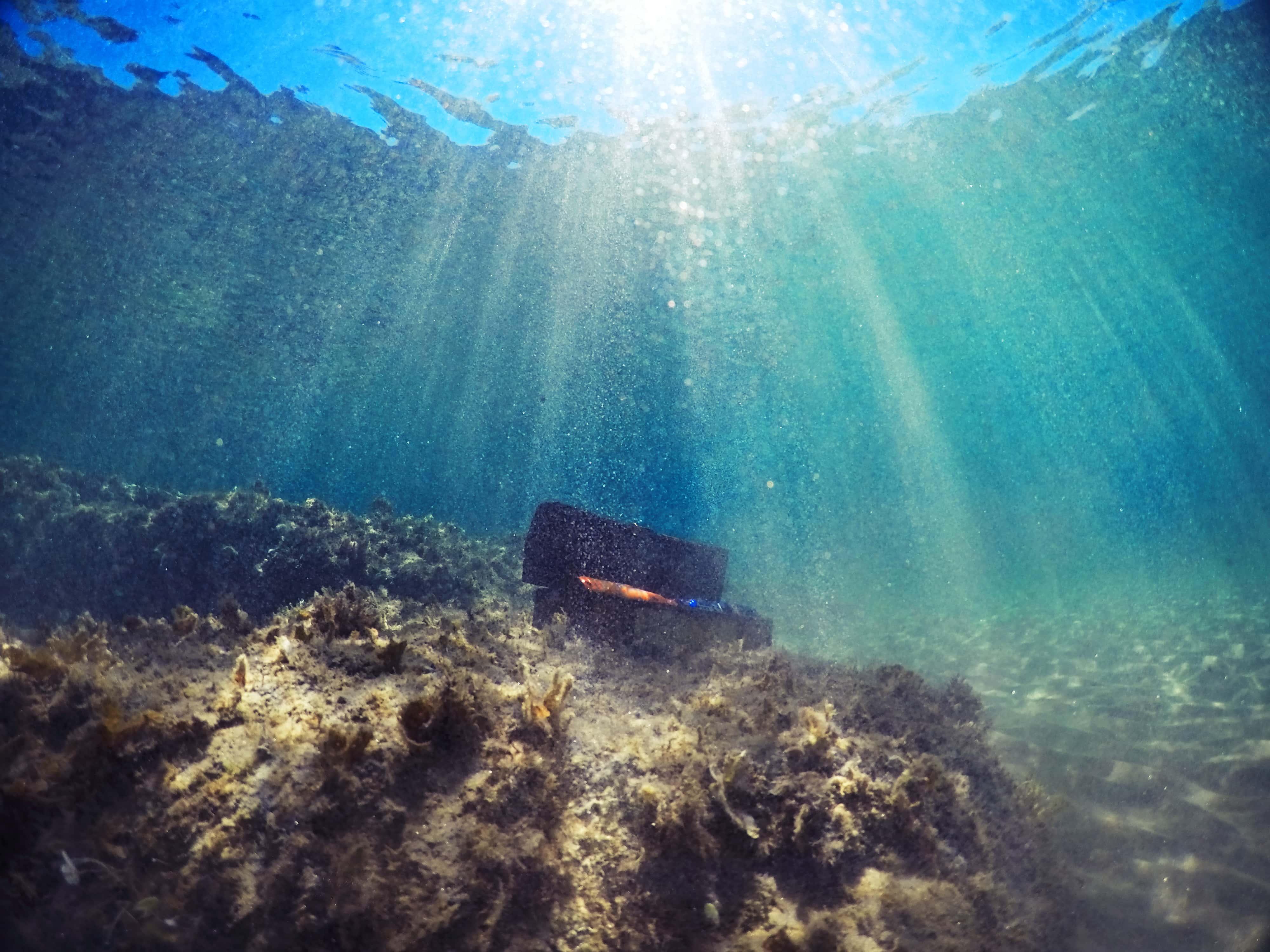 Treasure underwater.