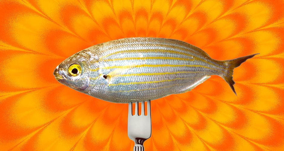 46 interesting facts about ancient rome for Urine smells like fish after eating fish