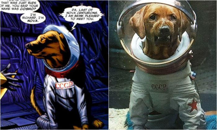 38 Facts About Guardians of the Galaxy Cosmo The Dog Guardians Of The Galaxy