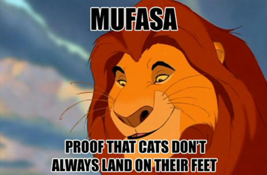 42 wild facts about the lion king page 3 of 7