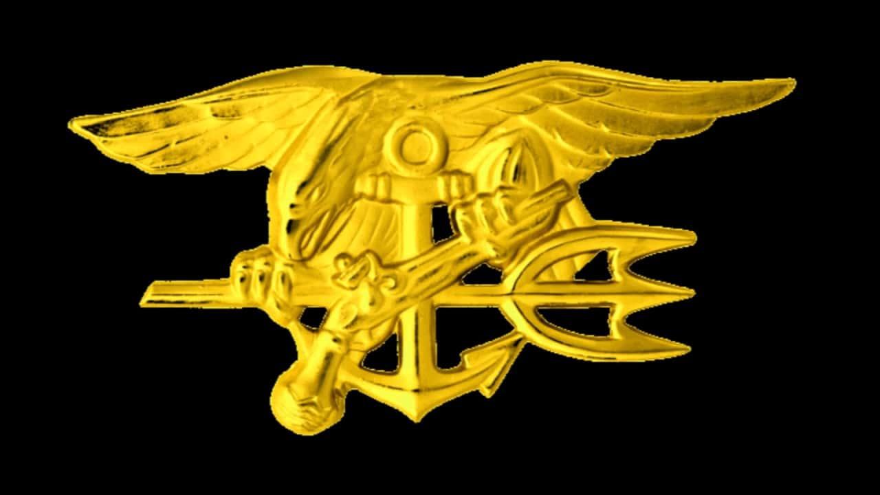 42 Badass Facts About Navy Seals