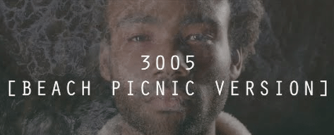 3005 (Beach Picnic Version)