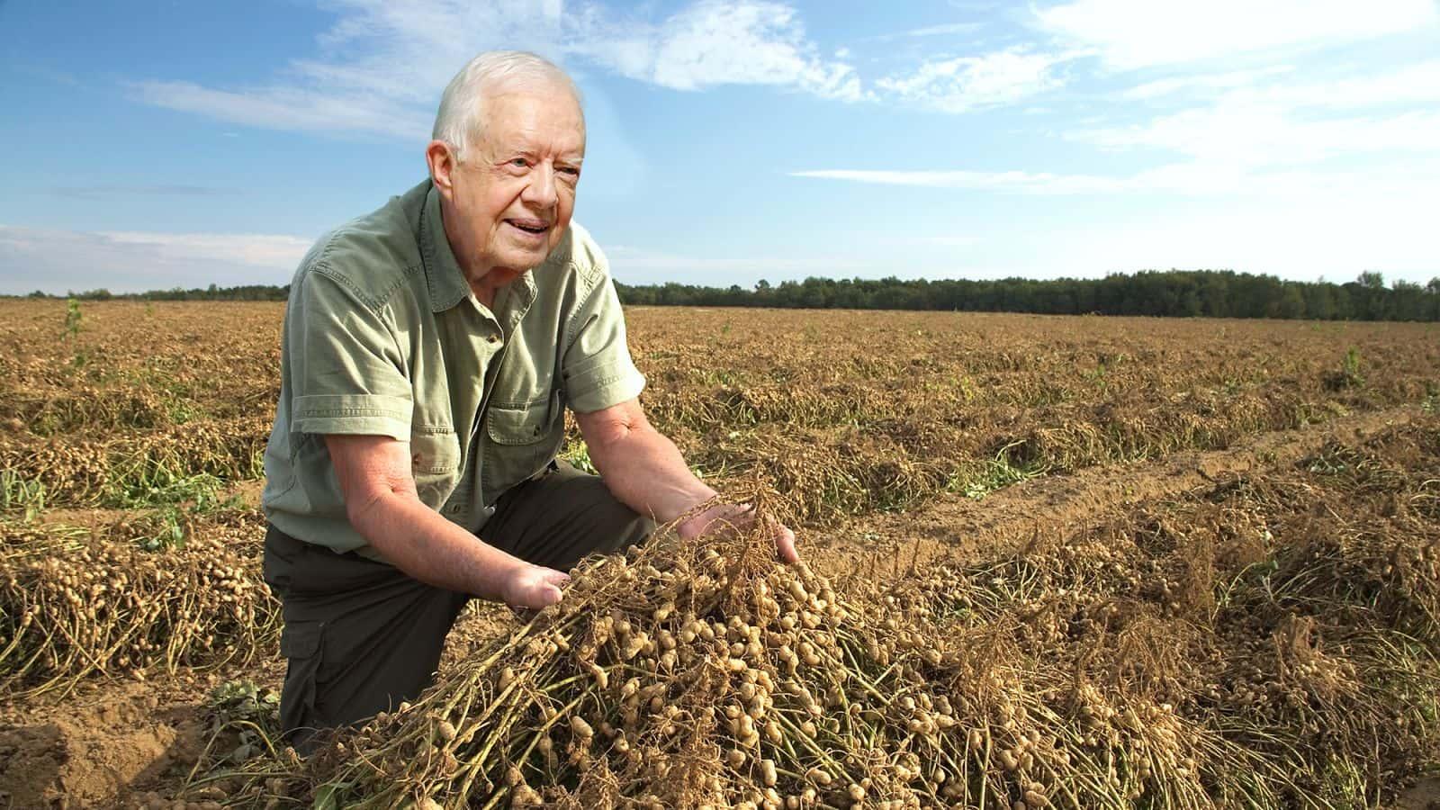 peanut farmer president