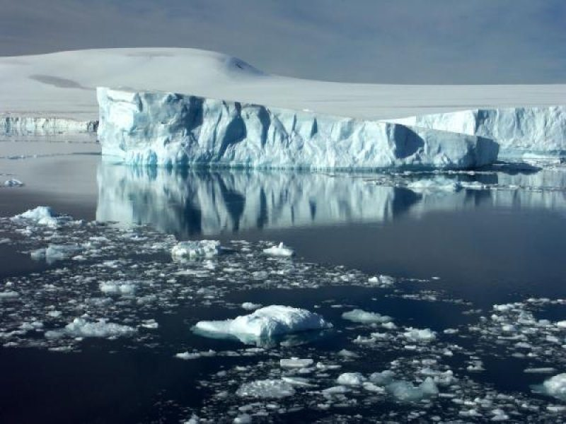 Iceberg - Facts About