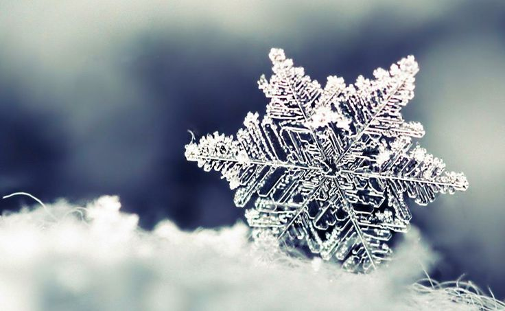 Large Snowflake - Facts About