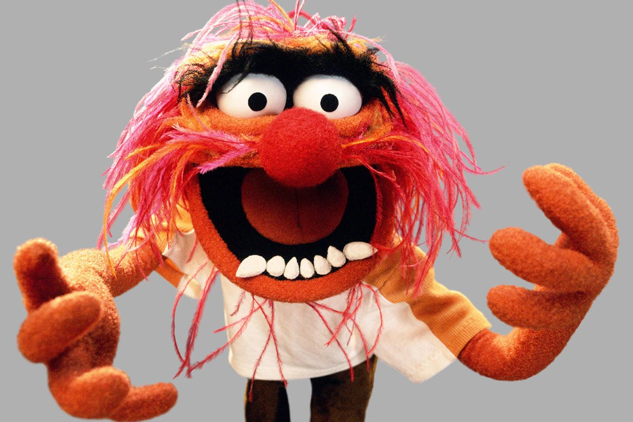 Muppets - Facts About