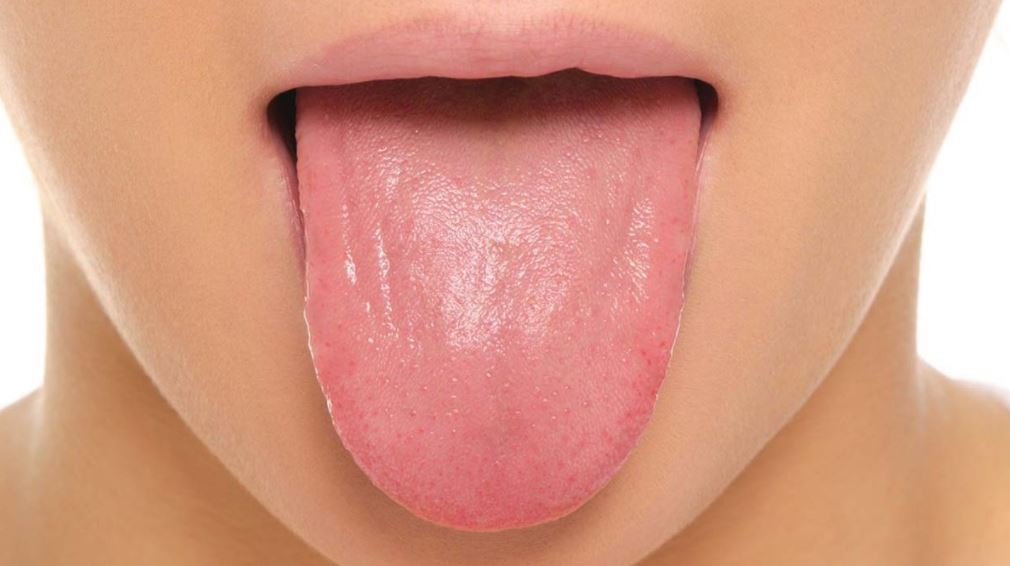Tongue - facts About