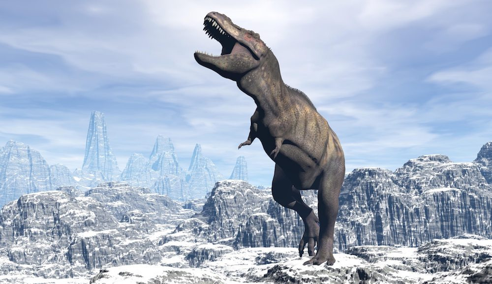 arctic dinosaur Fossils from a unique plant eating dinosaur found in the high arctic of alaska may change how scientists view dinosaur physiology, alaska and florida university researchers have said.