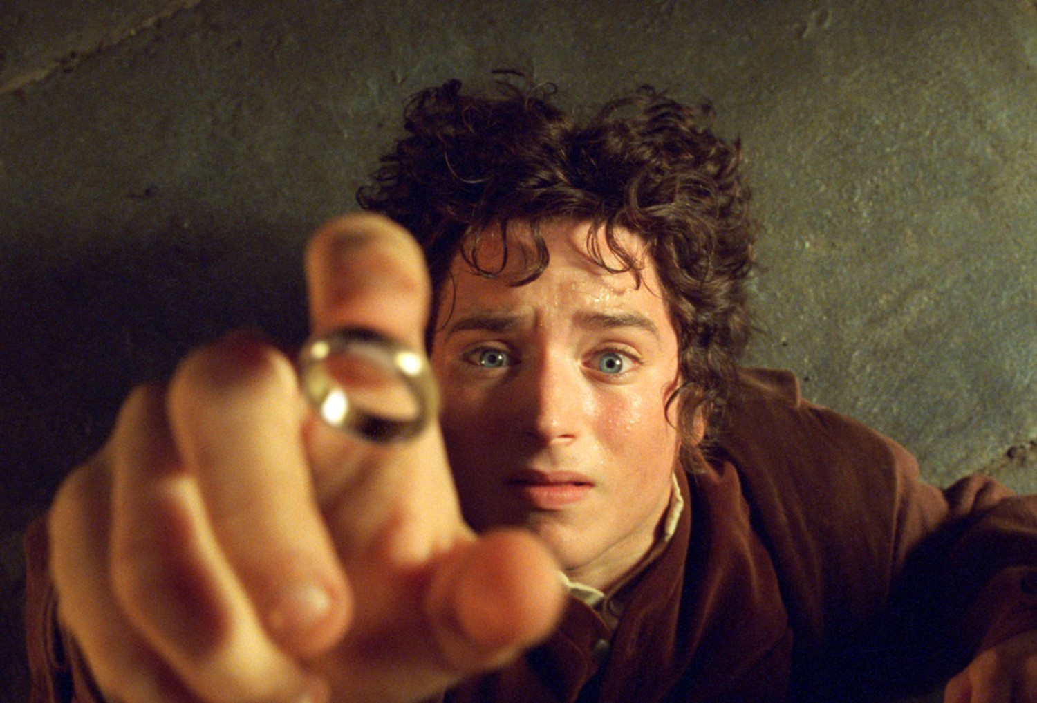 Lord Of The Rings Fellowship Of The Ring Facts