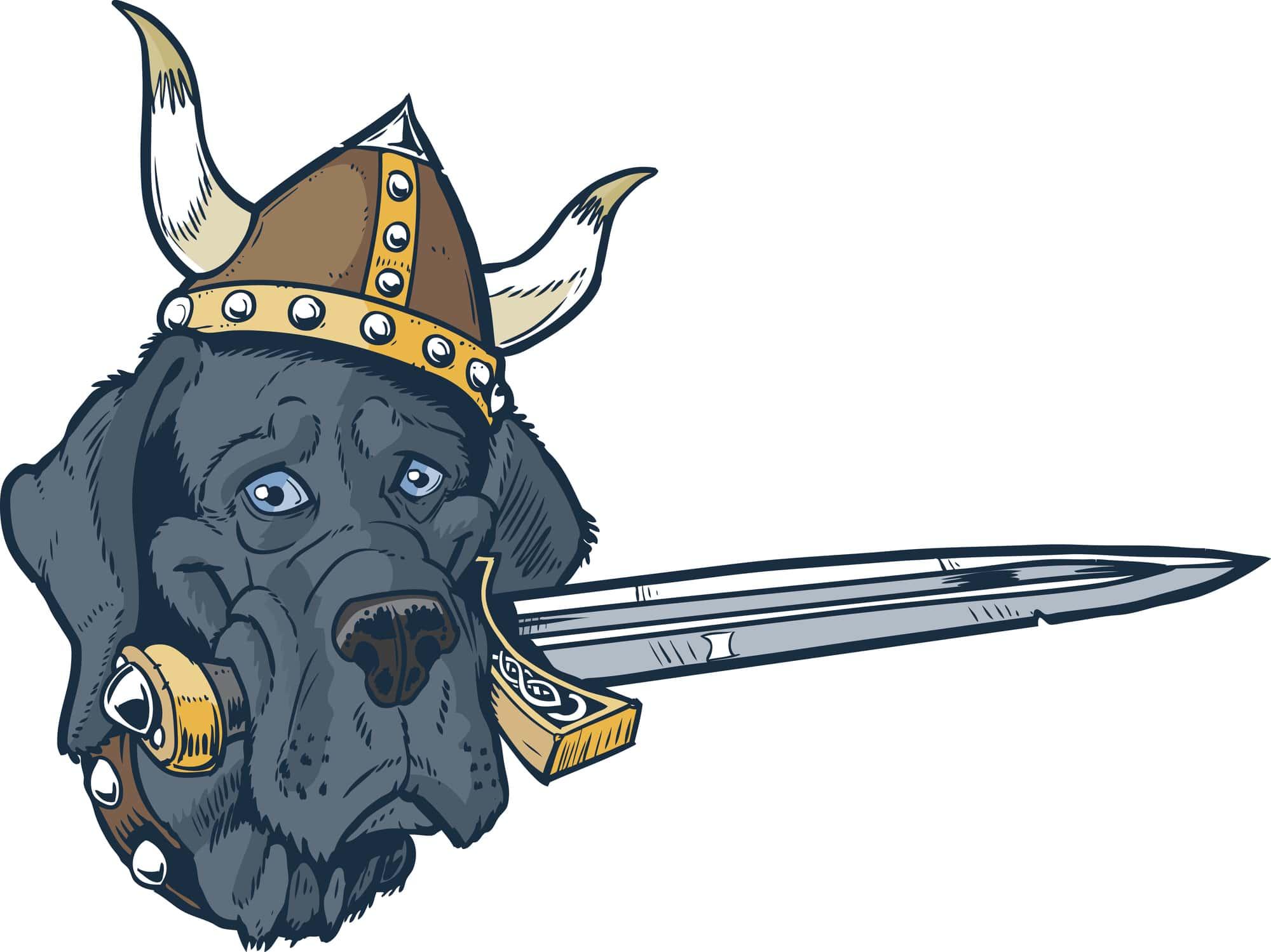Vikings Facts