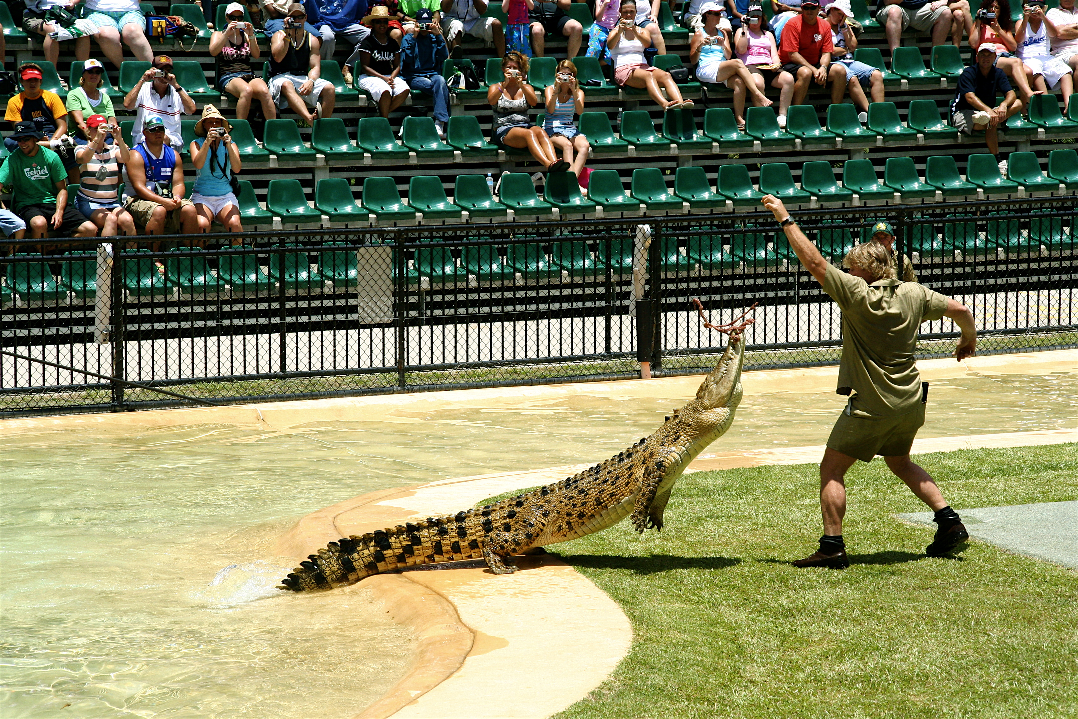 44 Wild Facts About Steve Irwin The Crocodile Hunter Page 2 Of 44