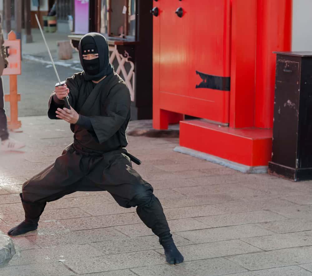 Ninjas Facts