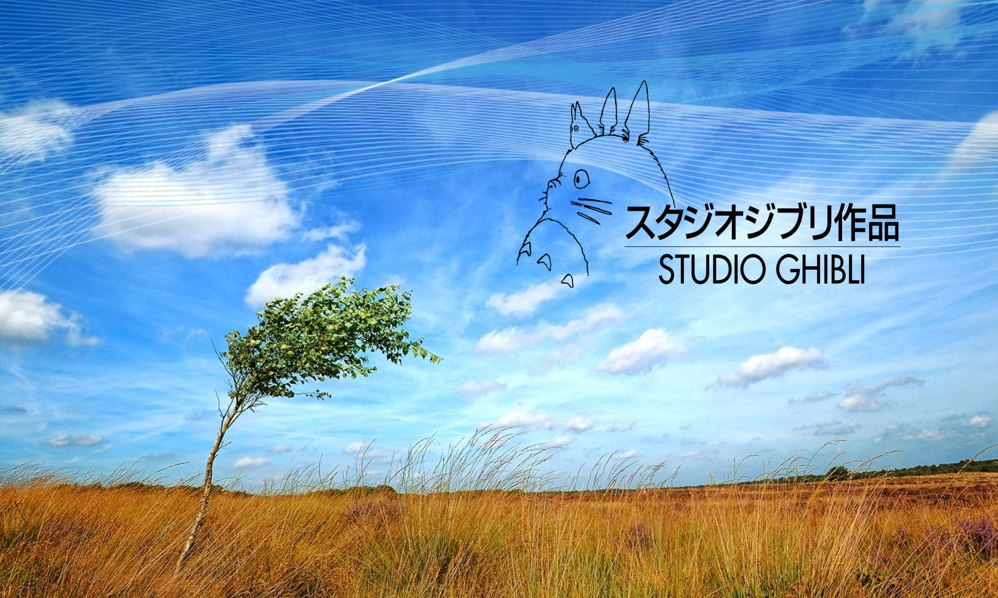 Studio Ghiblii Facts