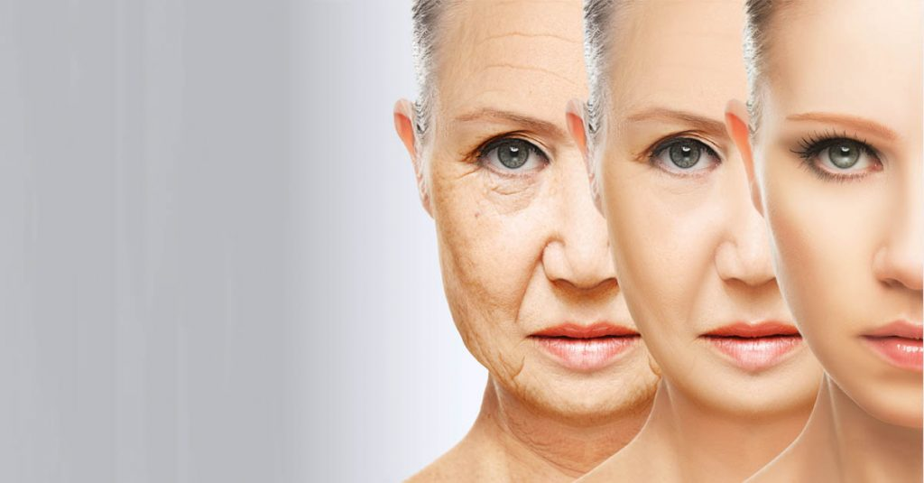 24 Wise Facts About Aging