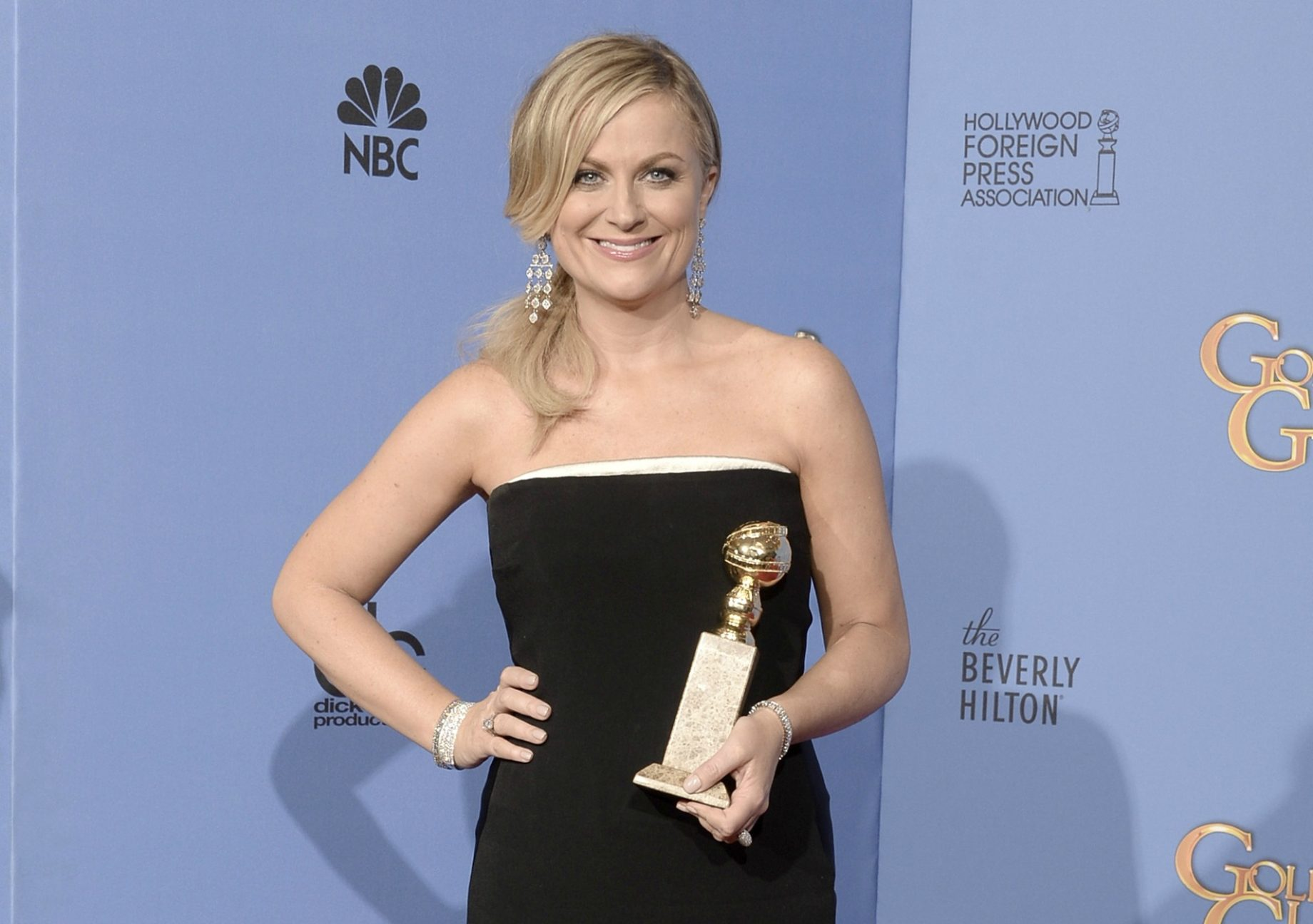 Amy Poehler Facts