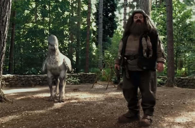 Rubeus Hagrid Facts