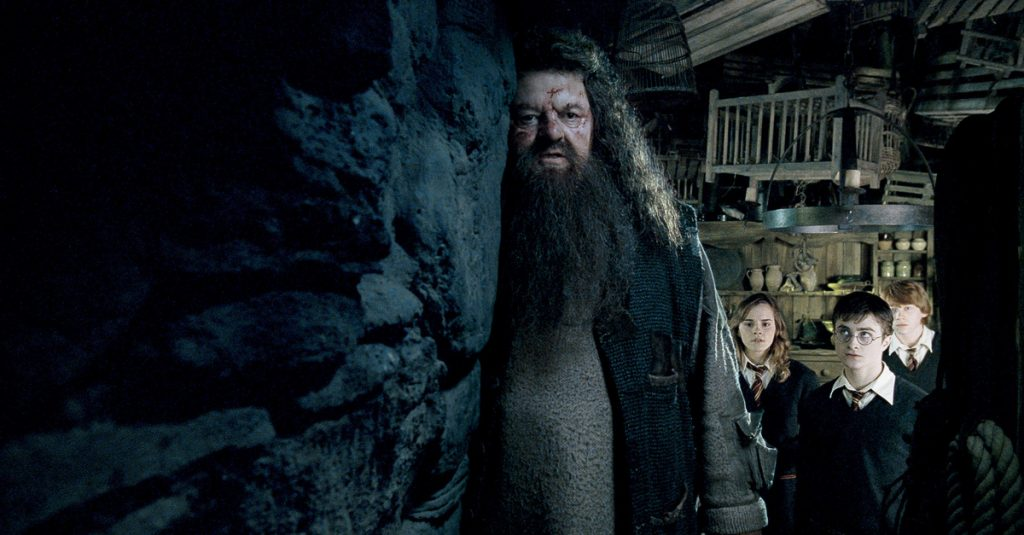 20 Larger Than Life Facts About Rubeus Hagrid