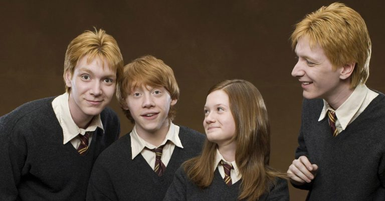 Weasley Family Facts
