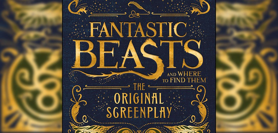 fantastic beasts facts harry potter