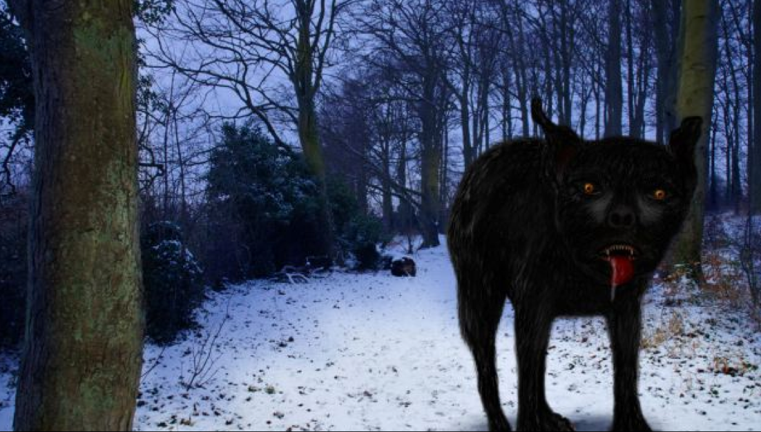 Sirius Black Dog Breed