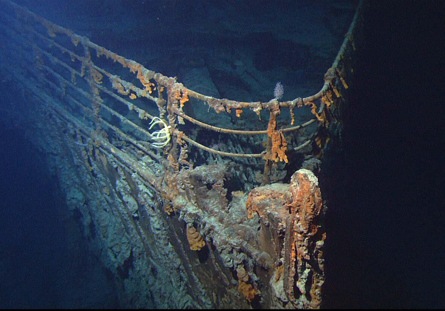Shipwrecks Facts