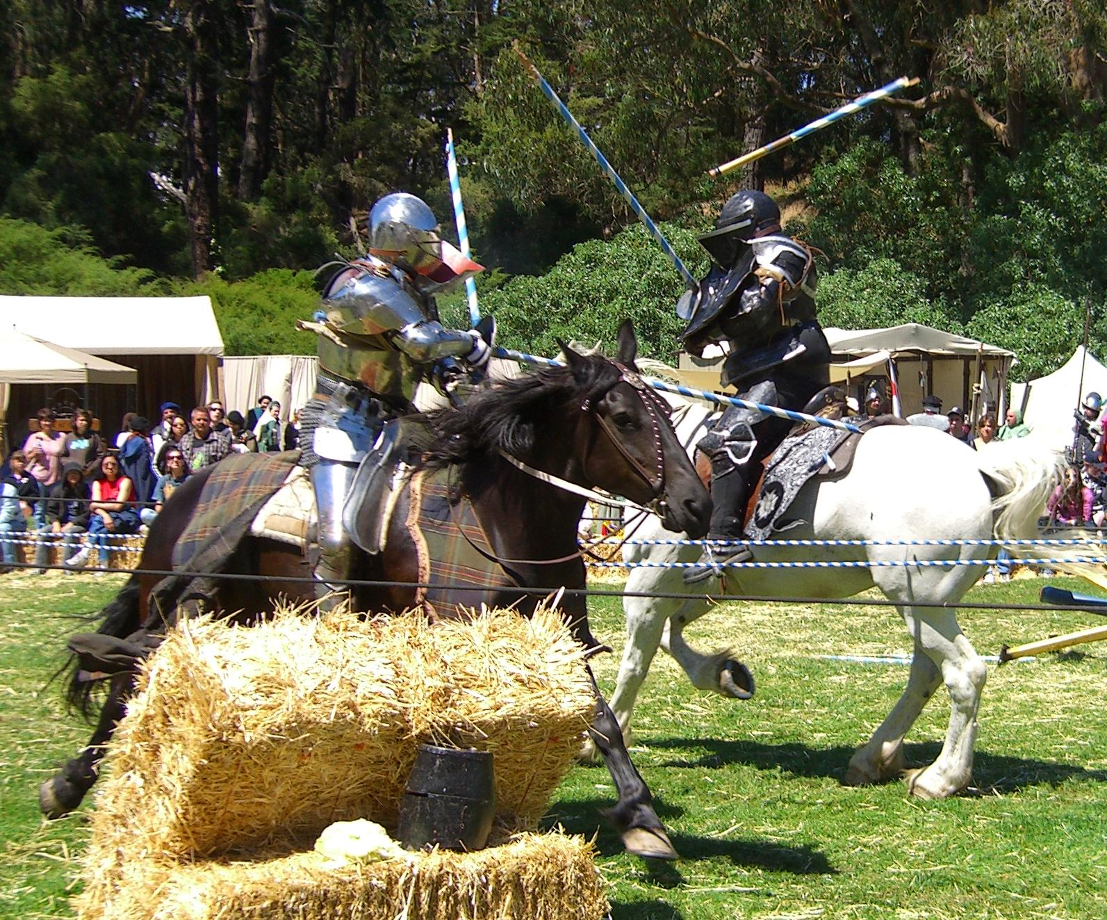 Medieval Knights Facts