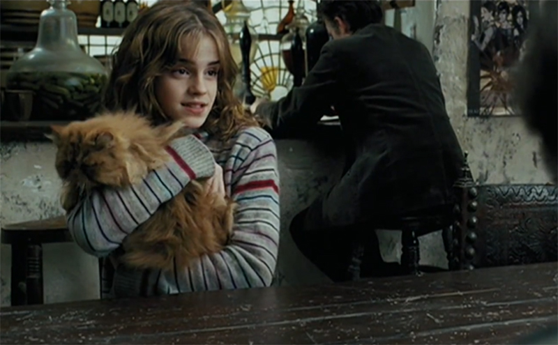 Magical Creatures of Harry Potter facts