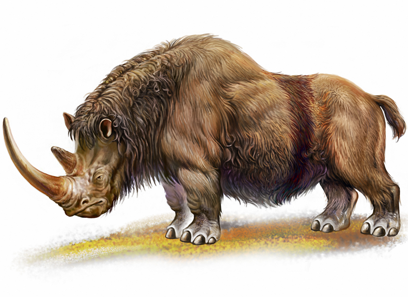 Prehistoric Beasts facts