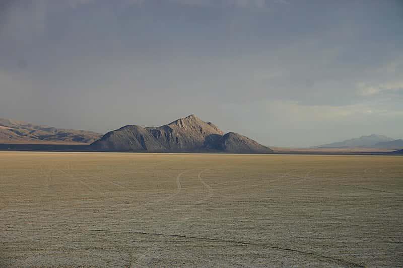 Burning Man Facts