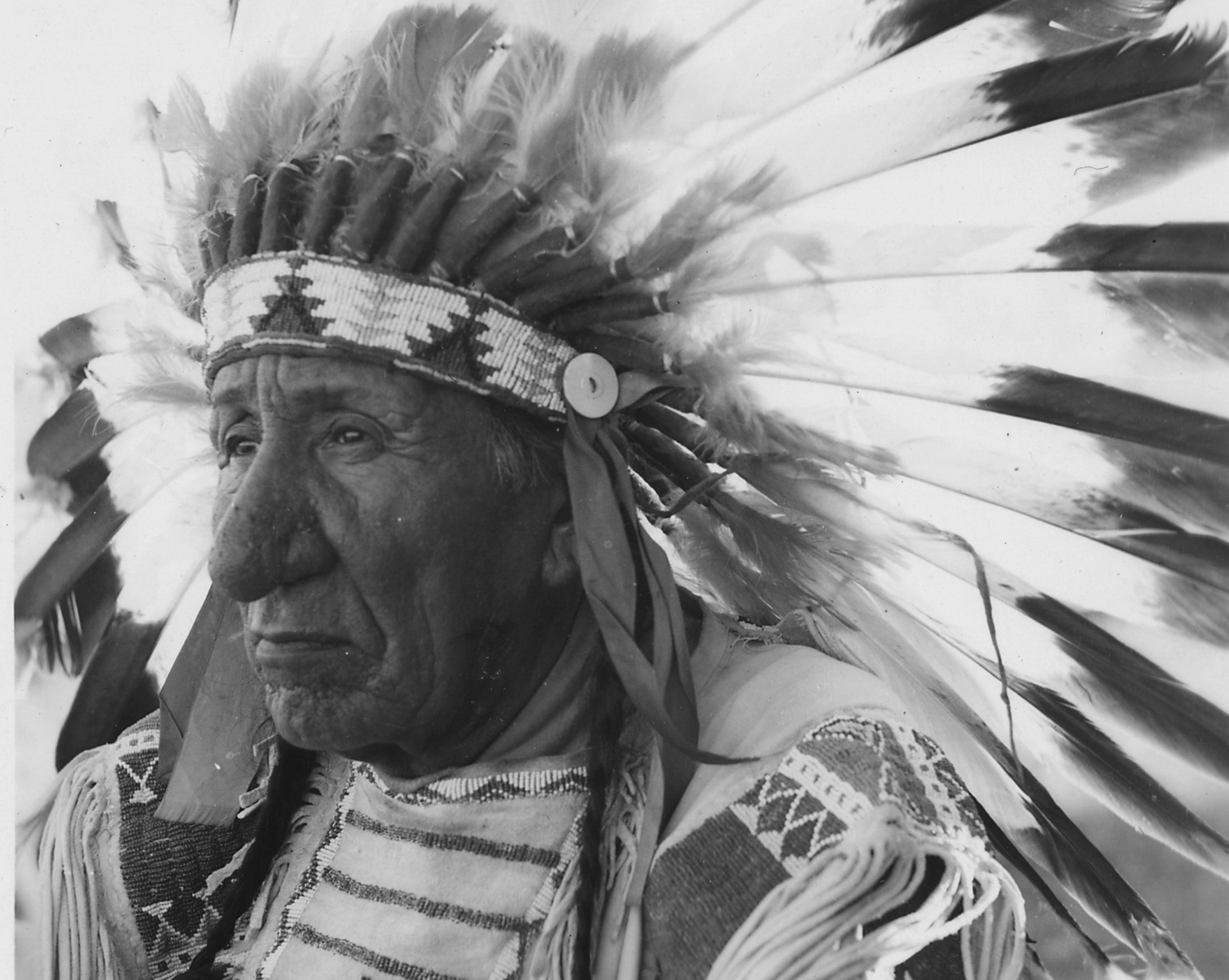 Tribal Chieftains Facts