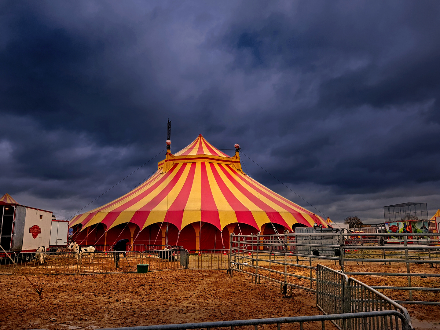 Circus Facts