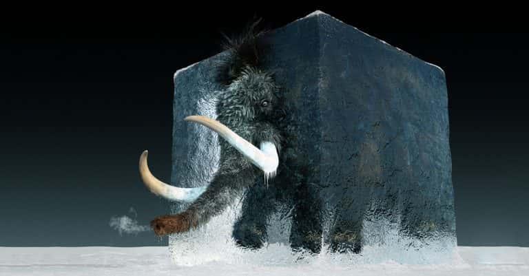 Prehistoric Creatures Facts