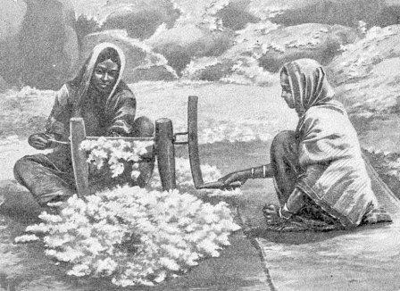 Ancient India Cotton Fact
