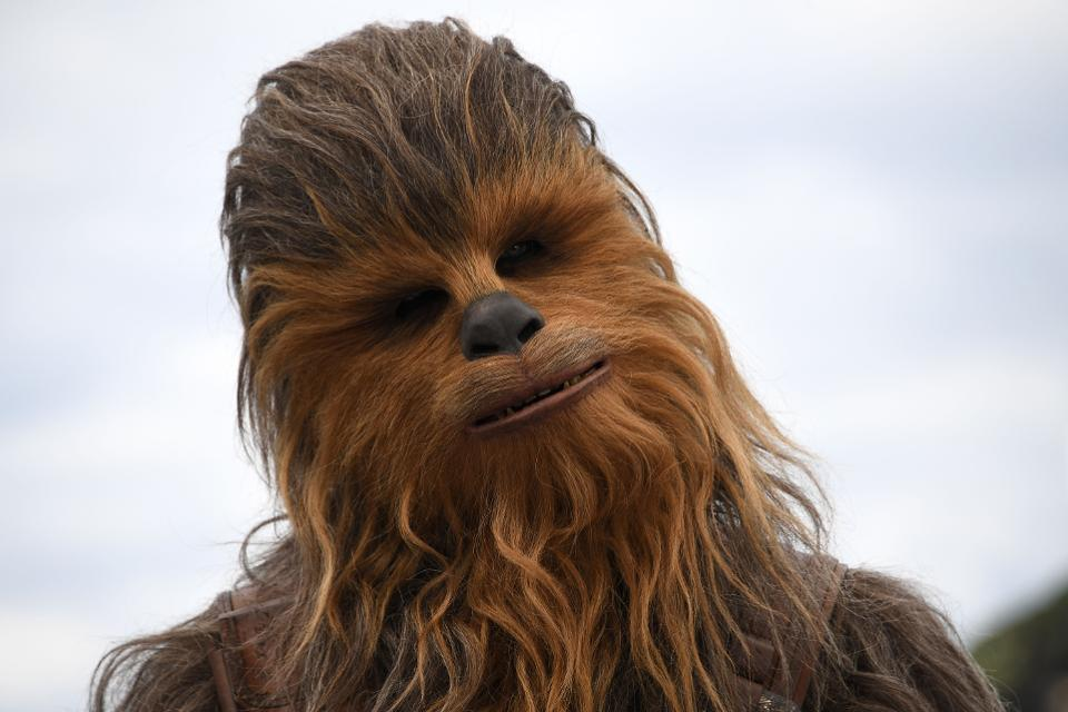 Chewbacca facts