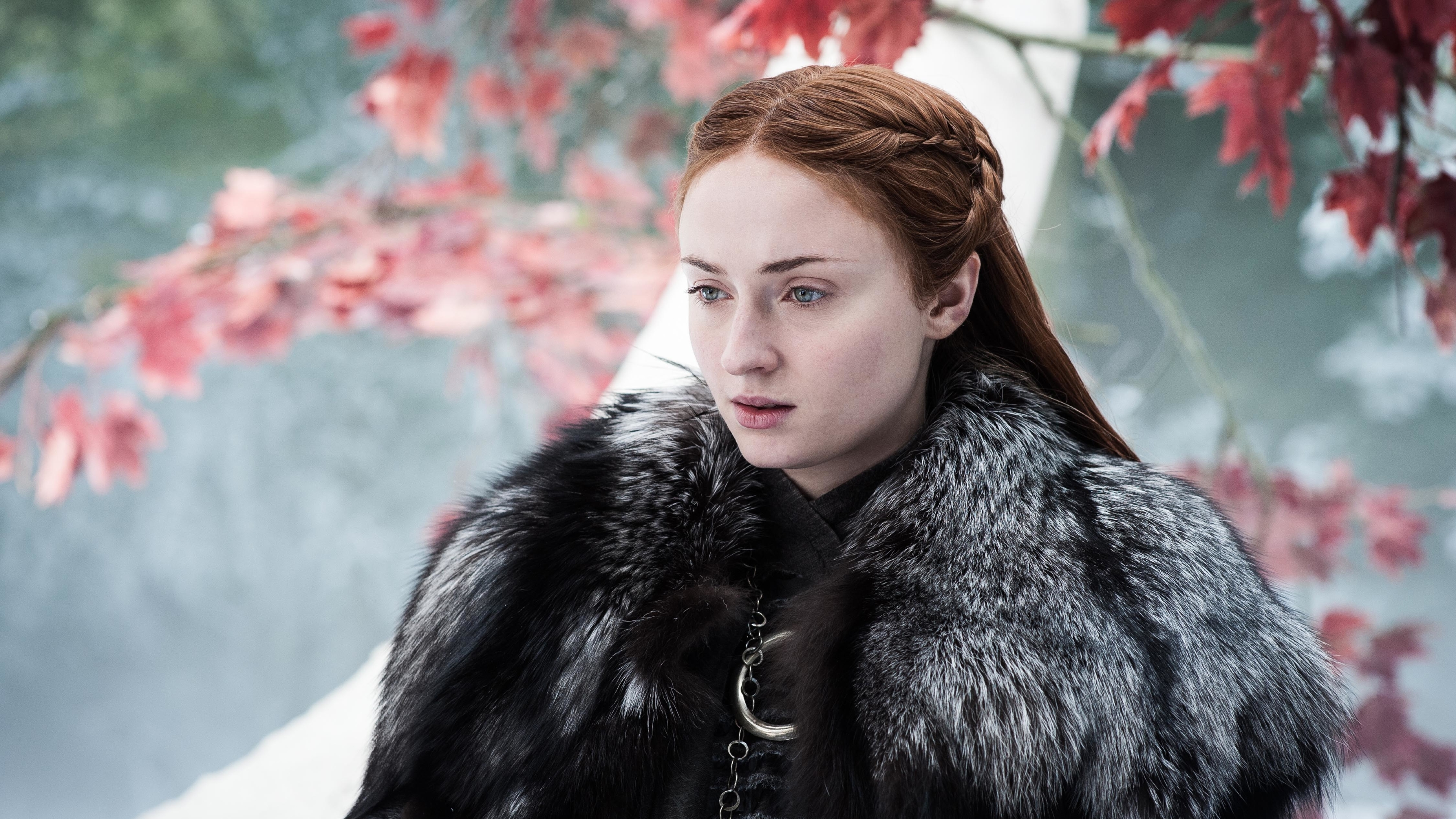 Sansa Stark facts
