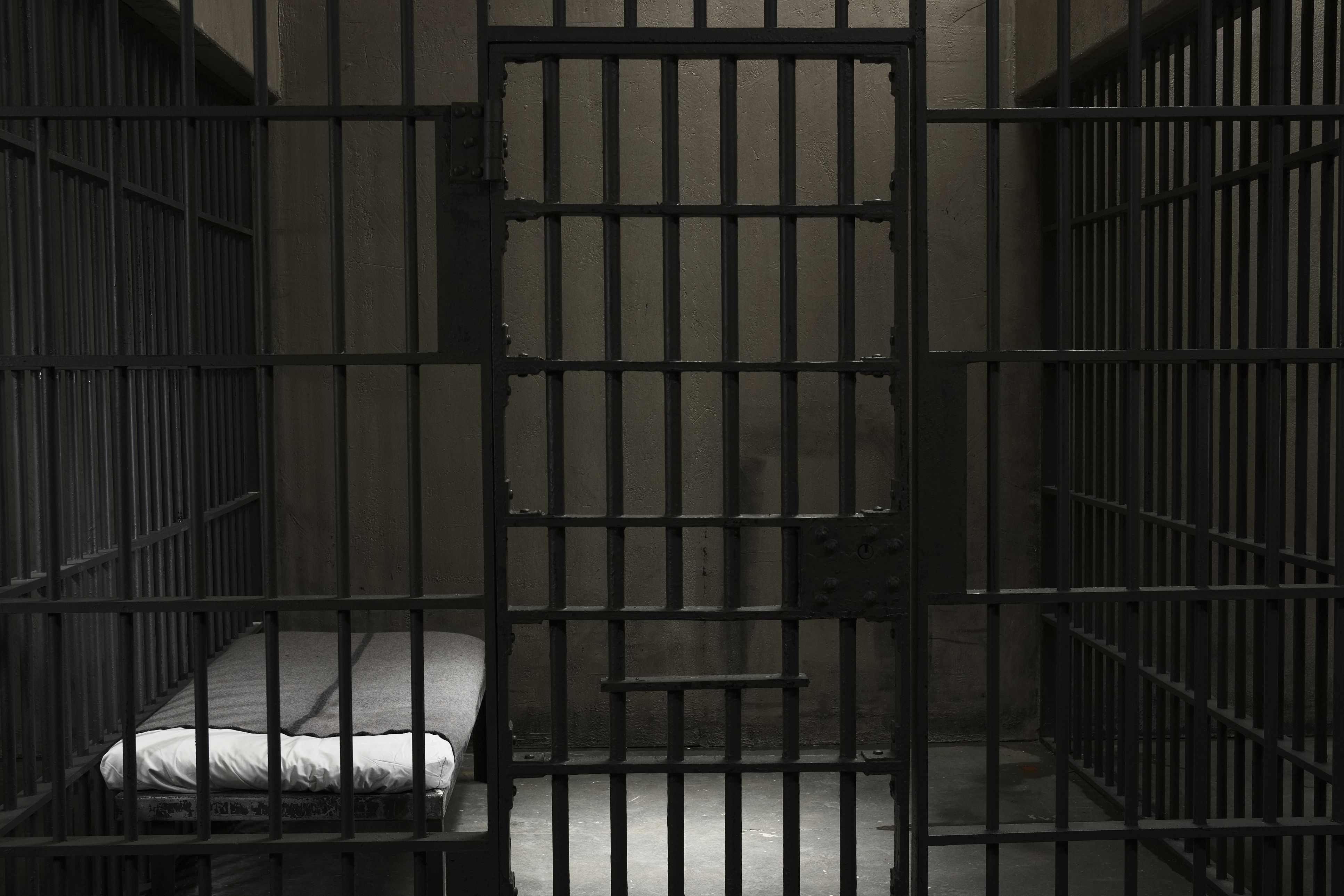 Ex-Prisoners facts