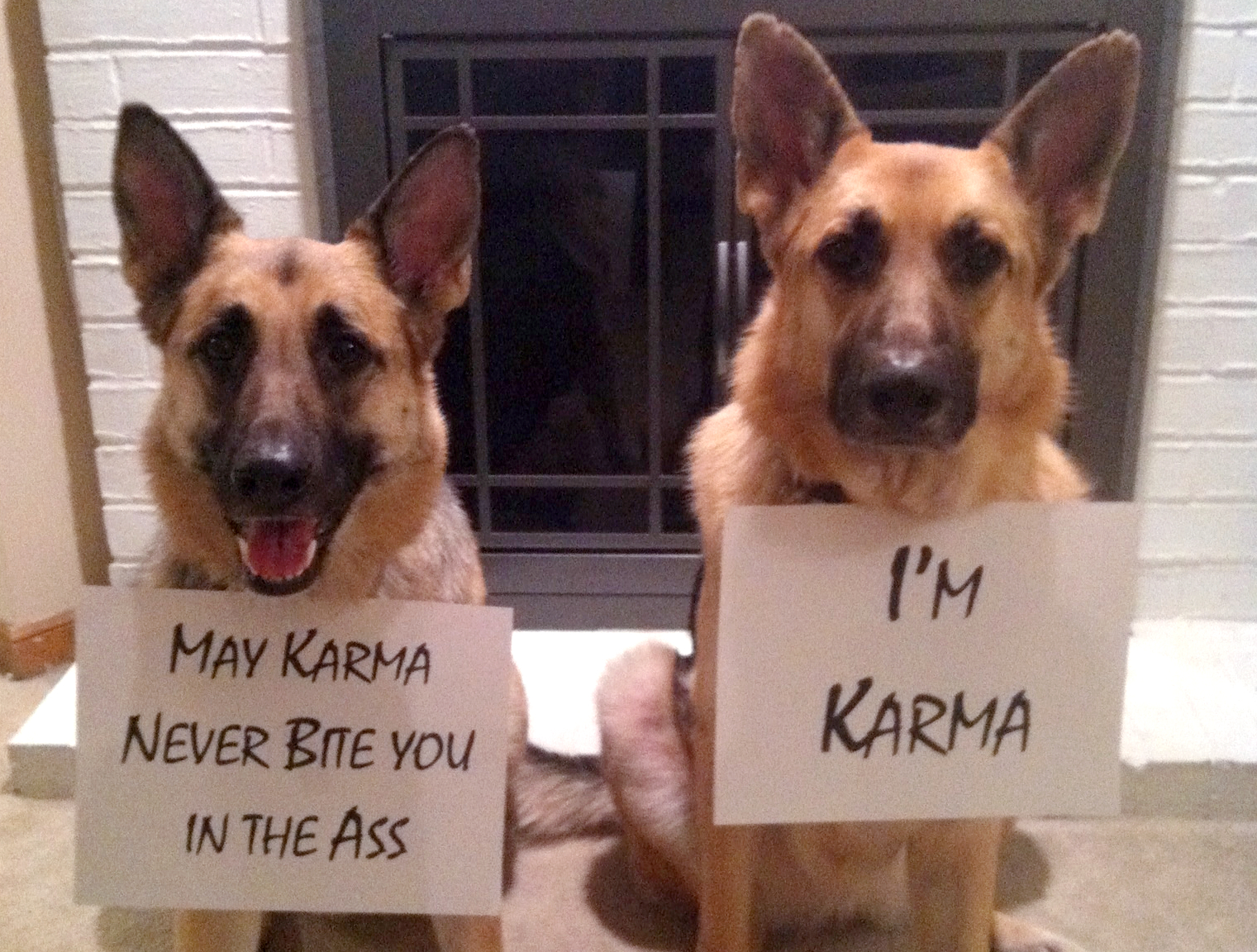 Total Jerks Receiving Instant Karma facts