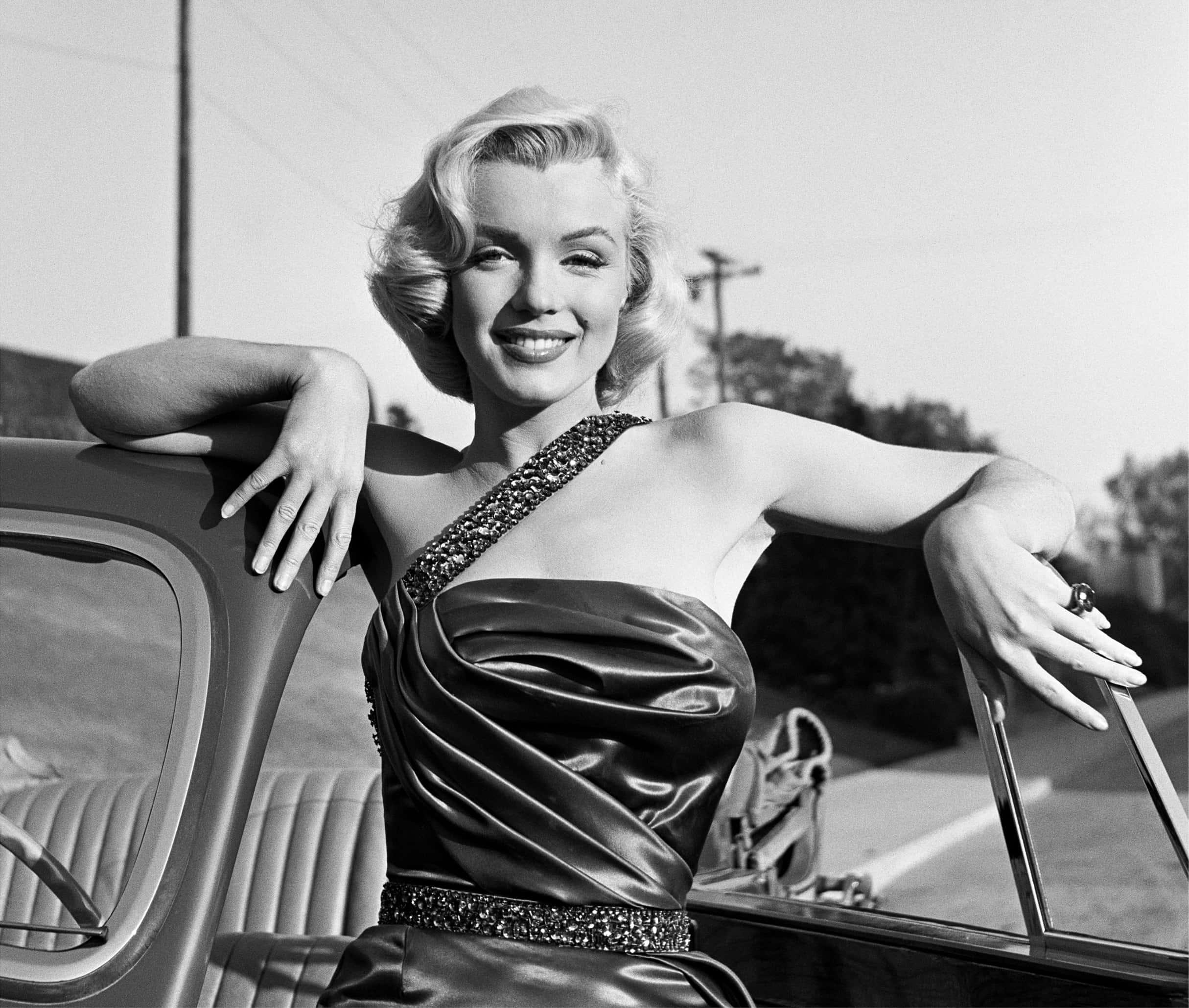 Marilyn Monroe Portrait.
