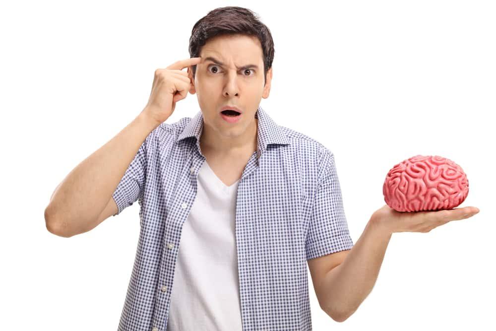Human Brain Quiz