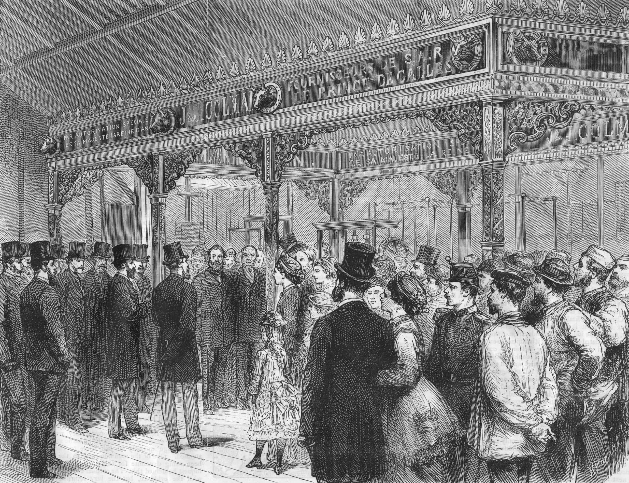 Edward VII facts