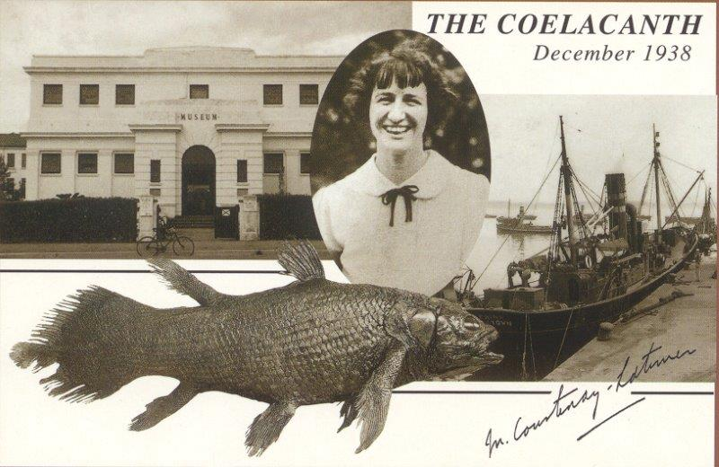 Coelacanth editorial