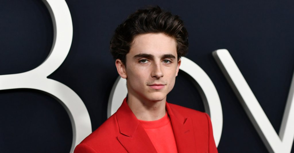 42 Charming Facts About Timothee Chalamet