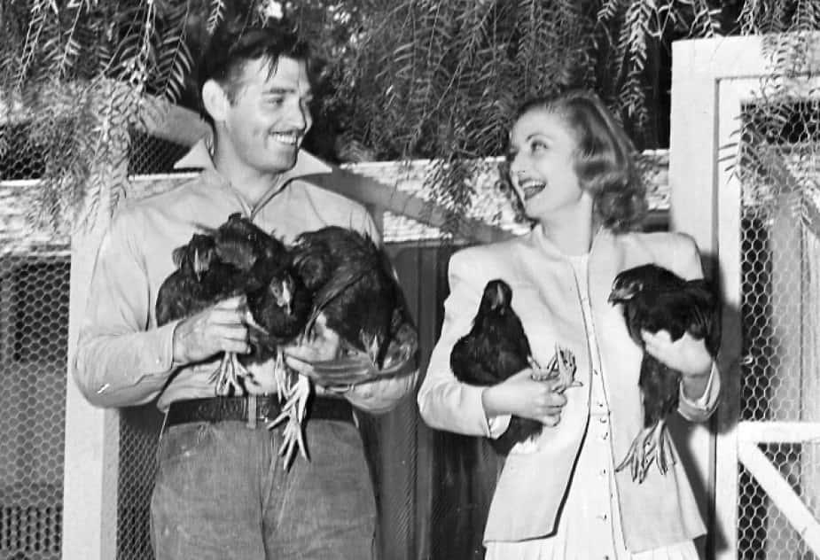 Clark Gable Facts