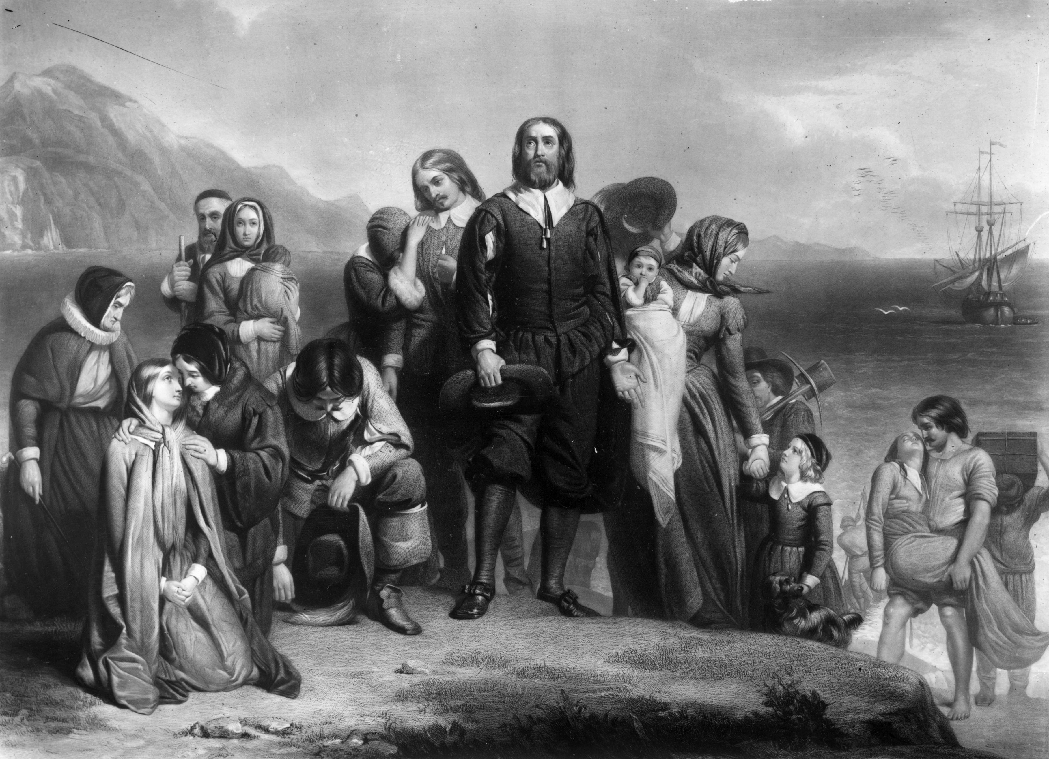 The Pilgrims facts