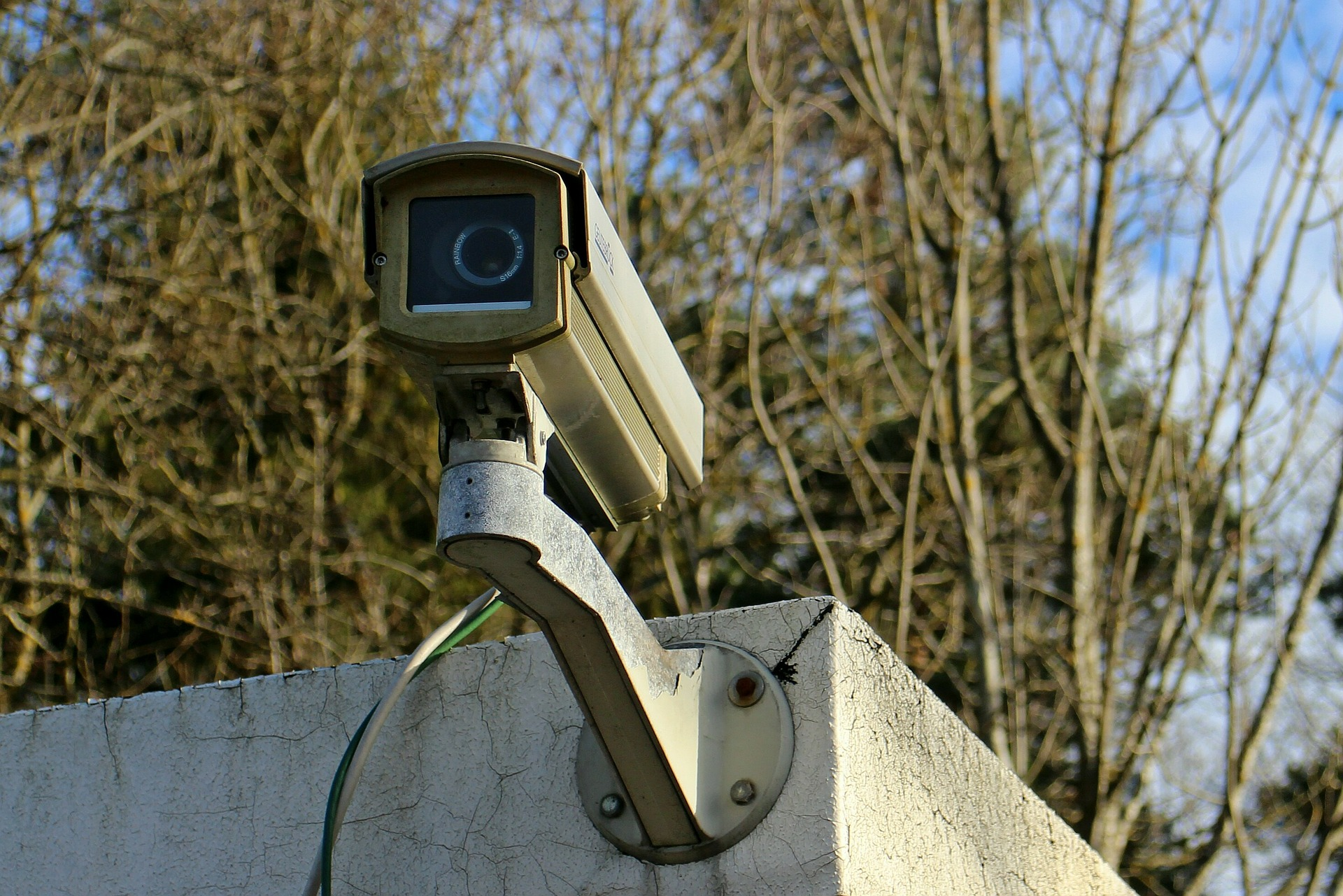 Caught on Home Security Cameras facts