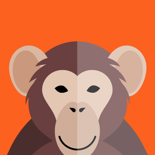 Monkey profile