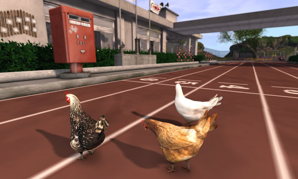 why did the chicken cross the road editorial
