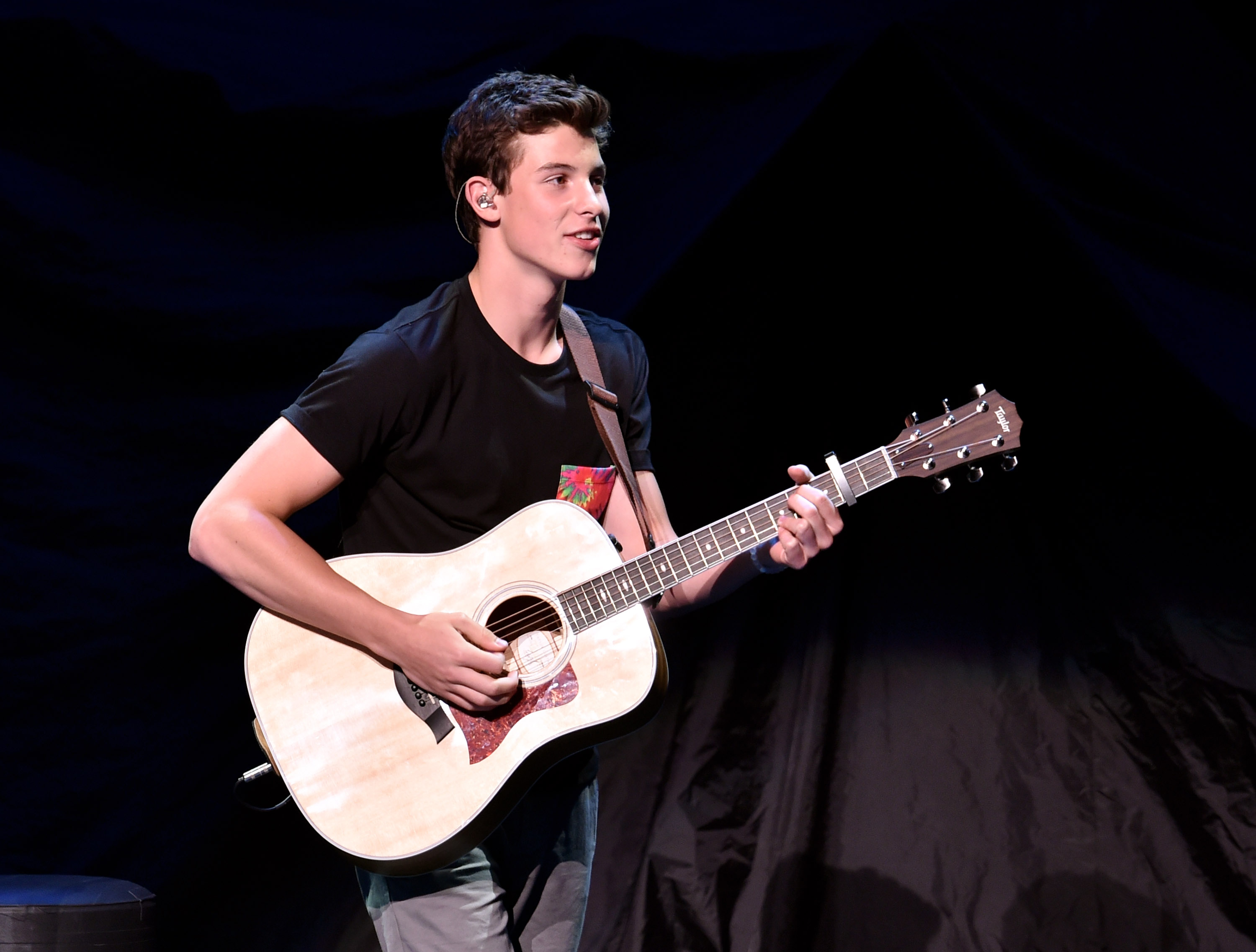 Shawn Mendes facts