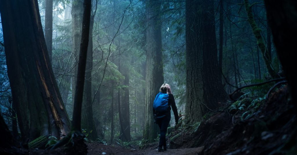 Hikers Confess To Their Most Chilling Encounters In The Wilderness
